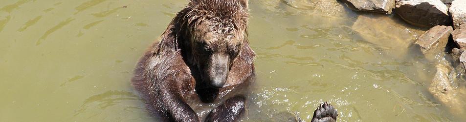 El parc dels animals és el que més queixes acumula.
