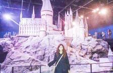 Harry Potter: 20 anys de màgia