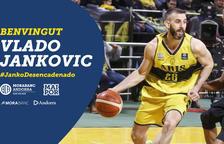El MoraBanc fa oficial el fitxatge de Vlado Jankovic