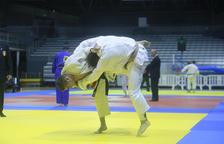 Una vuitantena de judokes de 17 clubs diferents participen avui en la Copa de Govern