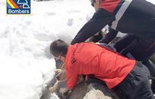 Un gos queda atrapat en un forat de 6 metres al Pas de la Casa