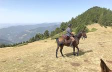Sobre el cavall