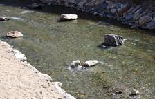 La qualitat de l'aigua dels rius és bona en un 84%