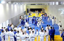 La federació confia a poder tenir algun representant als Jocs Olímpics de Tòquio 2020