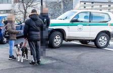 Expedient dels banders a la propietària del gos que va atacar una nena