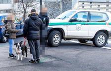 La mare de la nena que va ser atacada per un gos espera que el cas passi a mans de la Batllia