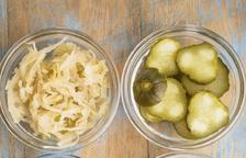 Aliments prebiòtics i probiòtics (I)