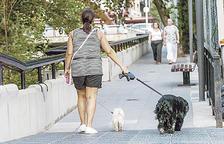 La taxa de tinença de gossos i Naturlandia, als set tuits