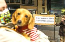 Protesta contra la taxa de gossos