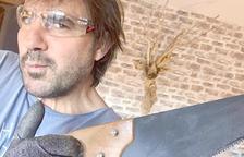 El músic Patxi Leiva