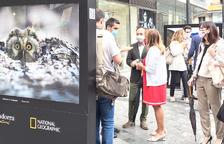 Rojo exlicant l'exposició a la plaça The Cloud a Espot i Marsol.