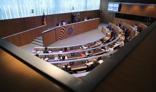 Sessió de control al Consell General