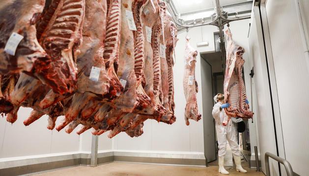 Després del sacrifici la carn passa a una cambra que la refreda ràpidament.
