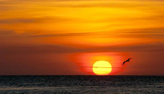 7. El mar: soc nascuda a Mallorca i ara, tot i que és un imprescindible meu, n'he de prescindir.