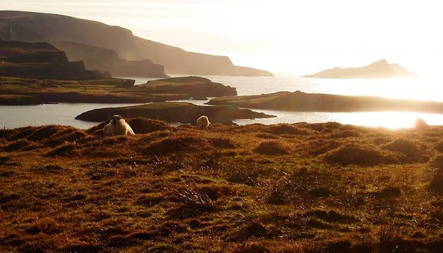 Una foto del viatge a Irlanda