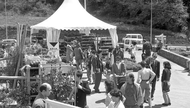 Visitants a la primera edició d'Andoflora, al Prat del Colat.