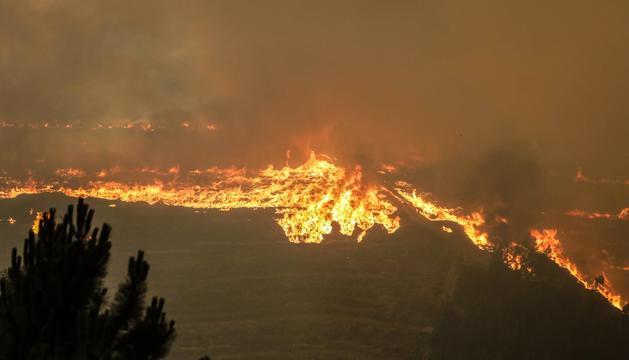 La línia de foc al bosc de Pampilhosa da Serra, al centre del país.