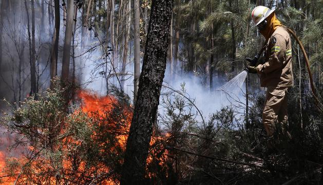 Un miembro de la Guardia Nacional Republicana (GNR) portuguesa combate el fuego en Alto da Louriceira