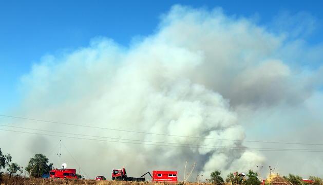 El cos de bombers treballava anit per extingir l'incendi a Artés.