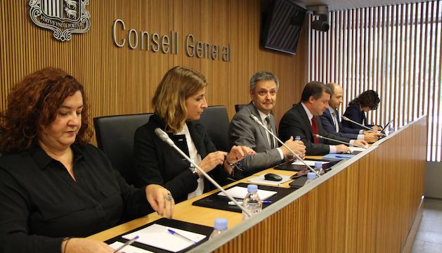 Saboya durant la compareixença d'avui al Consell General.