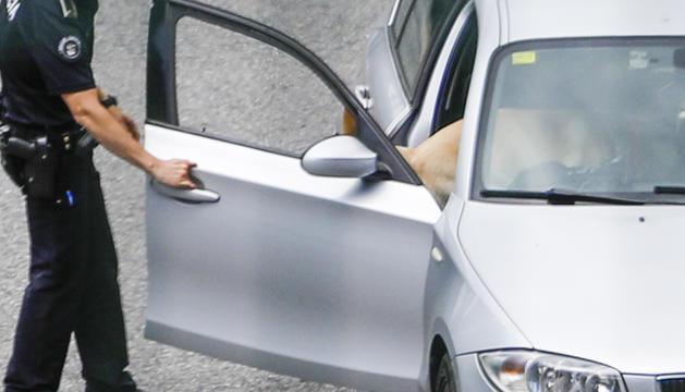 Un gos policia controlant un vehicle.