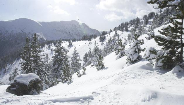 La neu acumulada desaconsella l'activitat forapista.