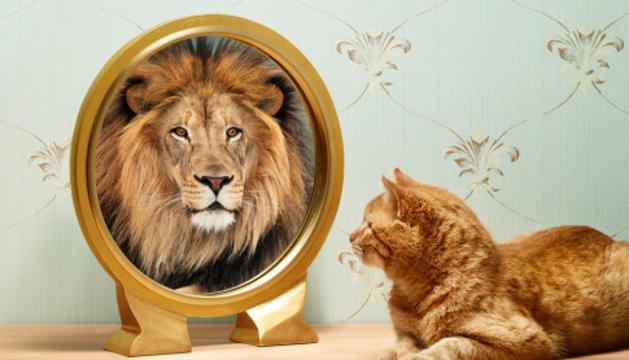 L'autoimatge provoca els resultats a la vida