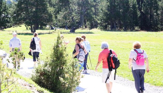 Ruta de senderisme per a la gent gran a Ordino