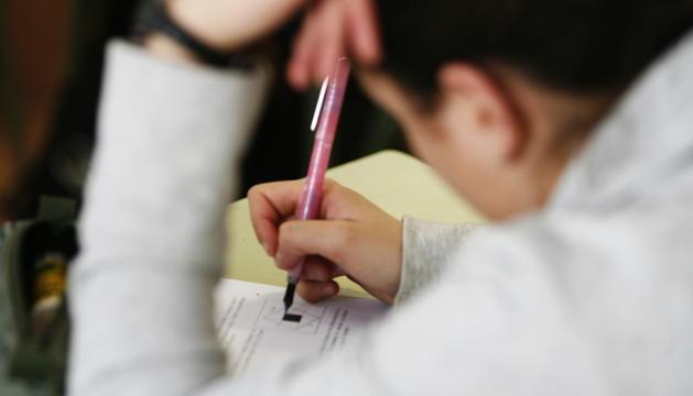 Beques per als alumnes que cursen un doctorat