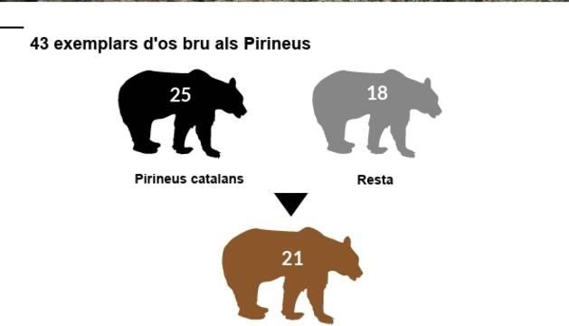 L'os descarta Andorra