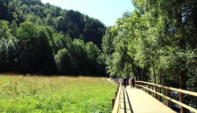 Un tram de la passarel·la de fusta que uneix la Cortinada amb Ansalonga