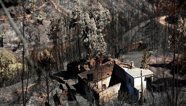 Vista d'una zona devastada pels incendis a Portugal.