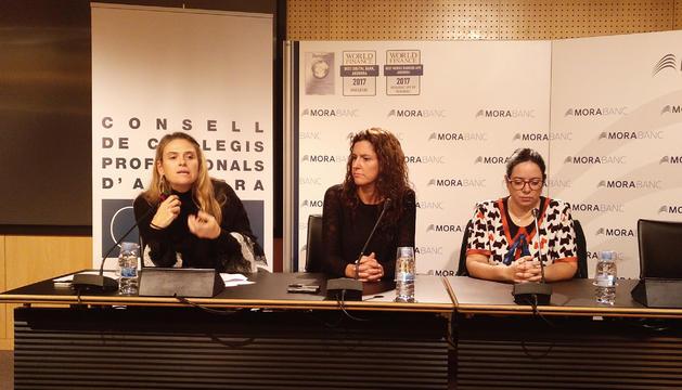 Roda de premsa del consell de col·legis professionals d'Andorra, avui