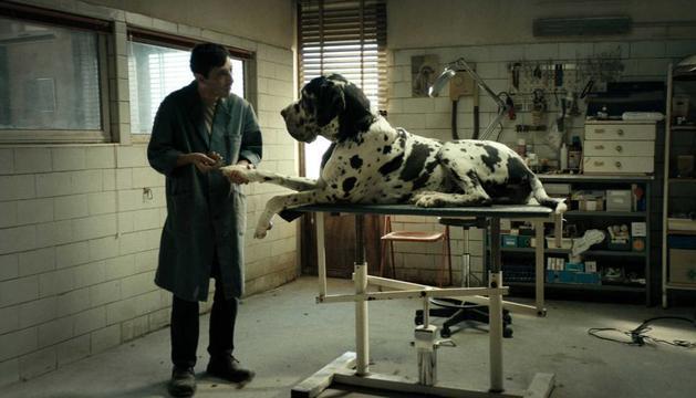 'Dogman', proposta per demà del Cineclub