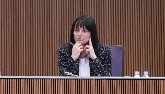 Mònica Bonell en una sessió del Consell General