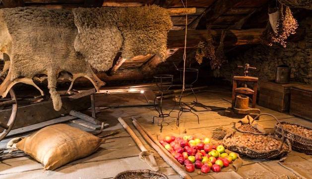 'Buscant els andosins' pels museus