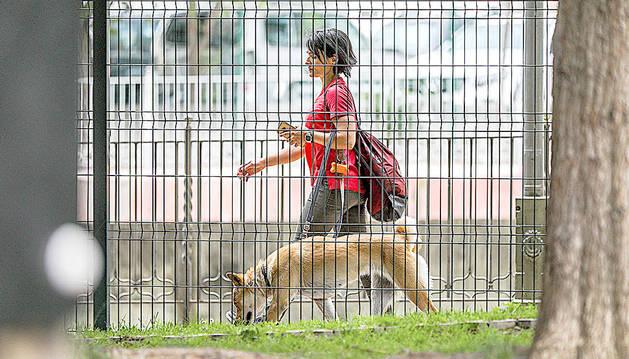 Una dona passeja la seva mascota al passeig del riu de la capital.
