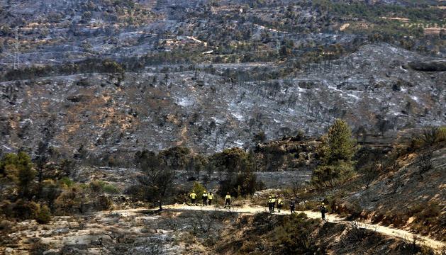 Grup de bombers a la zona afectada per l'incendi.