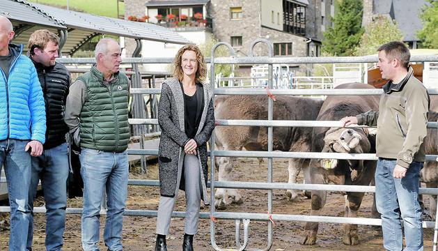 Els ramaders en volen potenciar la comercialització al país.