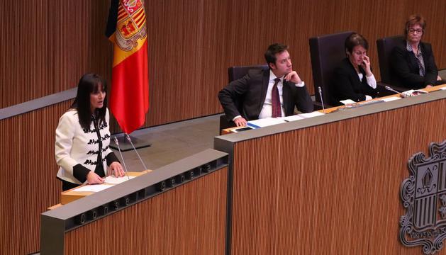 La consellera general, Mònica Bonell, durant la seva intervenció al Consell General