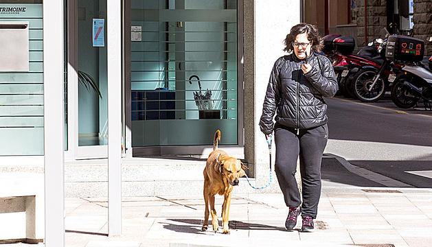 Una dona passejant el gos, ahir.