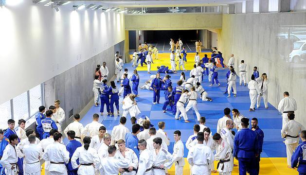 Judokes durant una trobada internacional l'estiu passat.