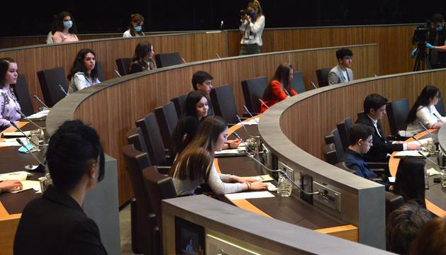 Els joves al Consell General