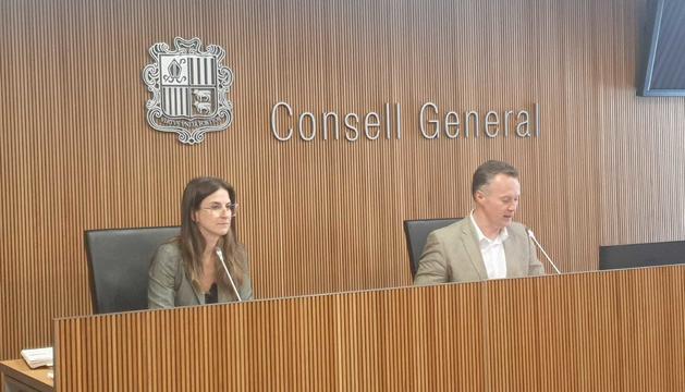La ministra de Cultura, Sílvia Riva, en comissió legislativa aquest matí.