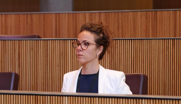Judith Salazar demana estadístiques de la justícia al Govern
