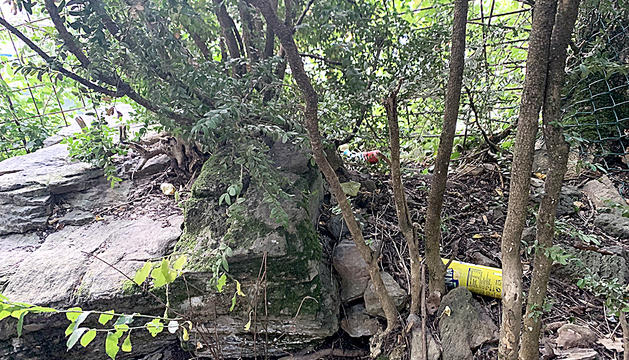 Ampolles llençades a la zona del rec de l'Obac, a tocar dels Marginets.