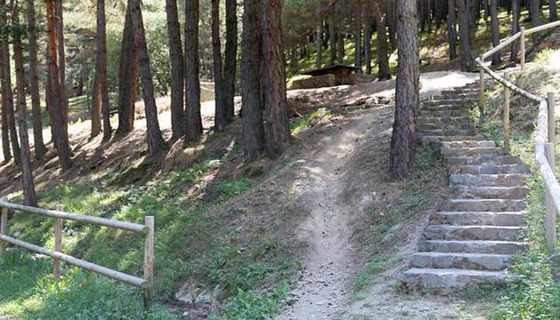 Un camí que hi ha prop del berenador de Sant Cristòfol.