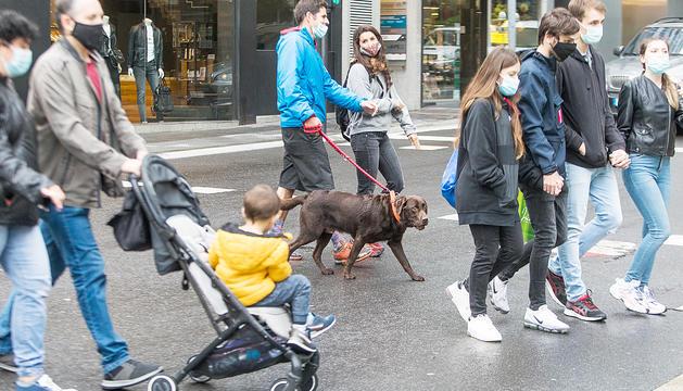 Onada de rebuig vers la taxa per tenir gossos
