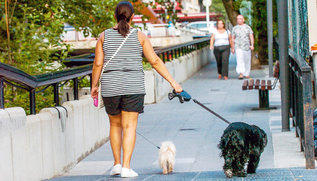 Una persona passeja dos gossos