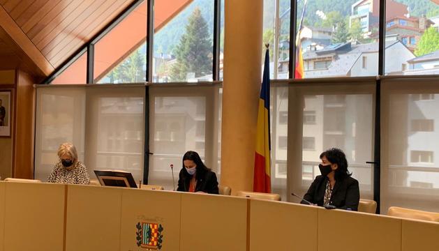 Un instant de la sessió del consell de comú de la Massana.